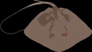 """גלשן בעל קו חיצוני רחב במיוחד באזור החרטום שנותן לגלשן אפשרות לכניסה מהירה לגל. DOUBLE WINGER  לקראת אזור הזנב אשר מצר את האזור הקריטי לתנועה בגלשן. כניסה לגל של גלשן גדול ויכולות ביצועים של גלשן קצר. דגם זריז ועצבני.   טבלת מידות ונפחים לדוגמא:    נפחעובירוחבגובה 21.7L        '2  3/4'18  """"4'5    24L   1/8'2       '19  """"6'5 24.5L   1/8'2  1/8'19  """"7'5 25.1L   1/8'2  1/4'19  """"8'5 26.1L 3/16'25/16'19  """"9'5 26.6L 3/16'2  3/8'19""""10'5 27.9L   1/4'2  1/2'19""""11'5 28.7L   1/4'2  3/4'19  """"0'6 30.1L 5/16'2       '20  """"1'6 31.8L   3/8'2  1/4'20  """"2'6   מומלץ במידות אורך: 10'5 - 3'6 רוחב: 1/2 18 - 1/2 19 עובי: 2 - 3/8 2"""